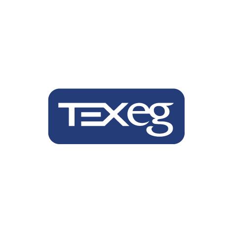 texeg_logo_design