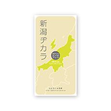 新潟ヂカラ パンフレットデザイン